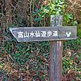 富山水仙遊歩道
