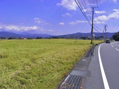 Fuji_zushi02