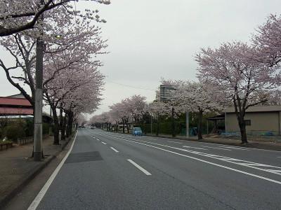 Itooyama01