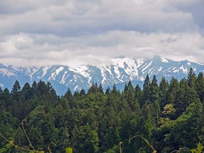 Niigata08