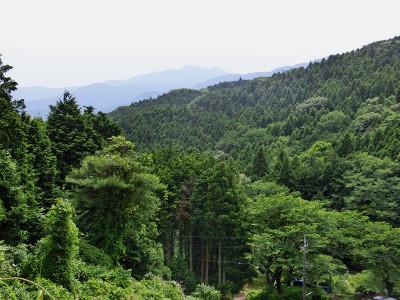 Tsukuba28