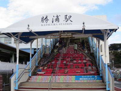 Katsuura15