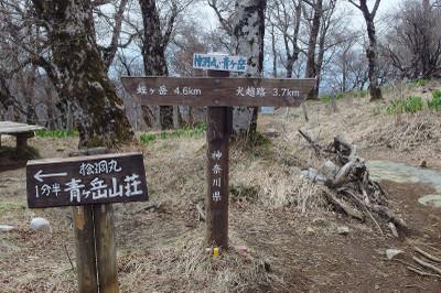 Hinokiboramaru16