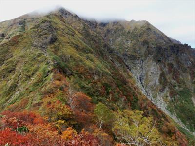 Nishiguro06