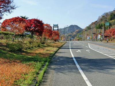Katsuura04