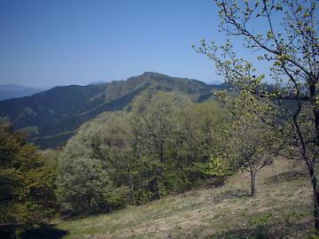 陣馬山頂からの三国山方面