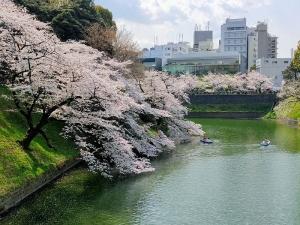 Sakura06s